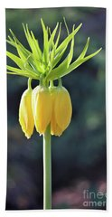 Crown Lily Beach Towel