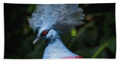 Crowned Pigeon Beach Towel by Mitch Shindelbower