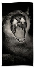 Cruz Yawning Beach Towel