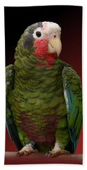 Cuban Amazon Parrot Beach Towel