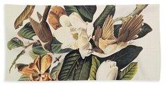 Cuckoo On Magnolia Grandiflora Beach Towel by John James Audubon