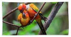 Cuddling Parrots Beach Sheet