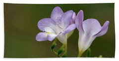 Cupertino Lavender Freesias Beach Towel