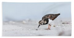 Curious Beachcomber Beach Towel