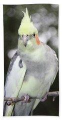 Curious Cockatiel Beach Towel by Inspirational Photo Creations Audrey Woods