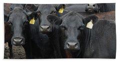 Curious Cows Beach Sheet