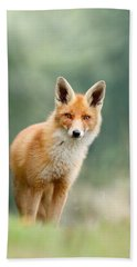 Curious Fox Beach Towel by Roeselien Raimond
