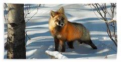 Curious Fox Beach Towel