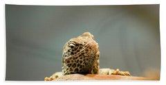 Curious Lizard Beach Sheet