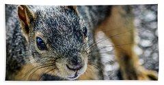 Curious Squirrel Beach Sheet