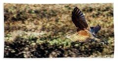 Curlew In Flight Beach Towel