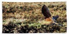 Curlew In Flight Beach Sheet