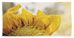 Curling Petals On Sunflower Beach Sheet