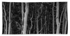 Beach Towel featuring the photograph Curves Of A Forest by James BO Insogna