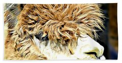 Soft And Shaggy Beach Sheet by Kathy M Krause