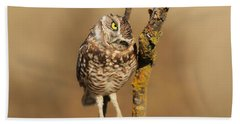 Cute Burrowing Owl Beach Towel