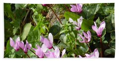 Cyclamen In Spring Beach Towel