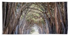 Beach Towel featuring the photograph Cypress Embrace by Everet Regal
