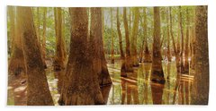 Cypress Forest Swamp Beach Towel