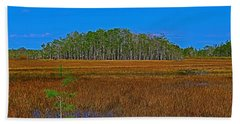 Cypress Hammock Beach Sheet