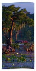 Cypress In The Sunset Beach Towel