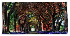 Beach Towel featuring the digital art Cypress Tree Tunnel by Jason Abando