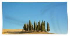 Cypress Trees Beach Towel