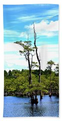Beach Towel featuring the photograph Cypress Trees by Tara Potts