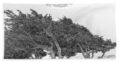 Cypresses Beach Towel by Jonathan Nguyen