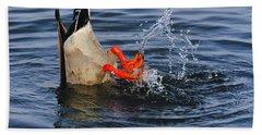Dabbling - Mallard Beach Towel by Tony Beck