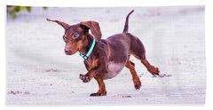 Dachshund On Beach Beach Towel by Stephanie Hayes