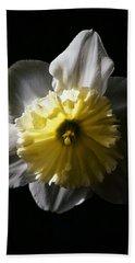 Daffodil By Sunlight Beach Towel