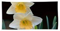Daffodil Beach Sheet by Kathy Eickenberg
