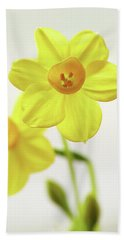 Daffodil Strong Beach Towel