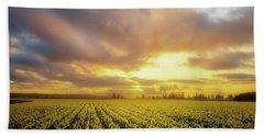 Daffodil Sunset Beach Sheet