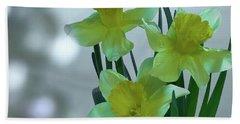 Daffodils3 Beach Towel