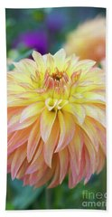 Dahlia Camano Pet Beach Towel