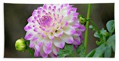 Dahlia Flower Beach Sheet