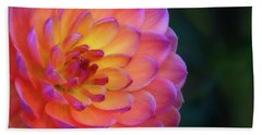 Dahlia Portrait Beach Towel