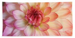 Dahlia Rainbow Beauty Beach Sheet by Rachel Cohen