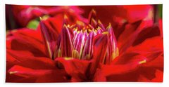 Dahlia Study 1 Painterly Beach Towel