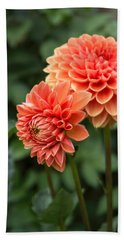 Dahlia Up Close Beach Towel
