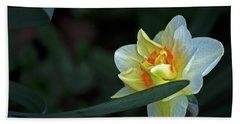Dainty Daffodil Beach Sheet