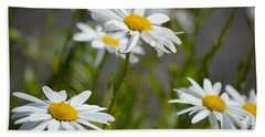 Daisies Galore Beach Towel