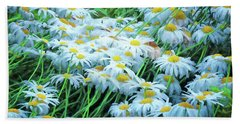Beach Towel featuring the photograph Daisies Galore by Tom Singleton