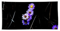 Beach Towel featuring the photograph Daisies In Purple by Lorraine Devon Wilke