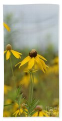 Beach Towel featuring the photograph Daisies In The Mist by Maria Urso
