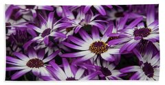 Daisy Flowers-2231 Beach Towel