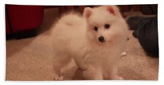 Daisy - Japanese Spitz Beach Sheet by David Grant
