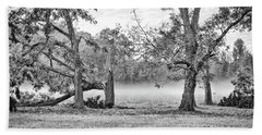 Dale - Foggy Morning Beach Towel by Scott Hansen